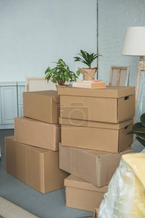 Photo for Close up view of cardboard boxes in room - Royalty Free Image