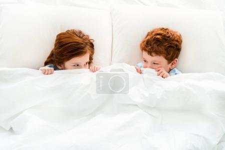 Photo pour Vue de dessus de mignons petits enfants rousses se cachant sous la couverture et se regardant - image libre de droit