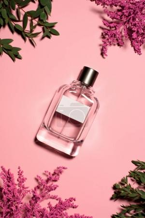 Photo for Top view of bottle of perfume with flowers and leaves on pink surface - Royalty Free Image