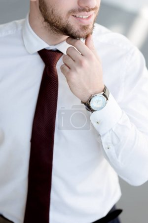 partial view of businessman in tie and watch