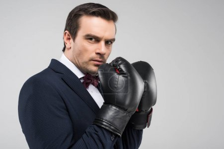 handsome man in suit and boxing gloves, isolated on grey