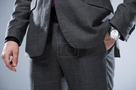 Photo for Close up of businessman in formal suit with hand in pocket, isolated on gray - Royalty Free Image