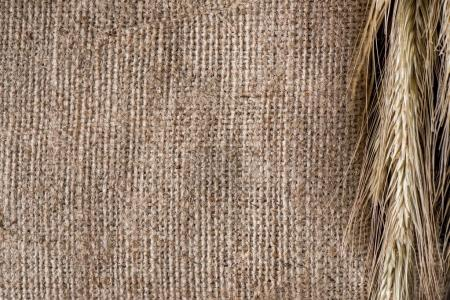 close up view of wheat on sackcloth background