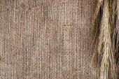 """Постер, картина, фотообои """"крупным планом вид пшеницы на фоне вретище"""""""