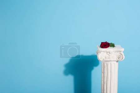 Photo for One red rose on white column on blue - Royalty Free Image