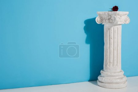one red rose on white column on blue