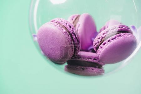 close-up shot of pink macarons in glass ball on turquoise background