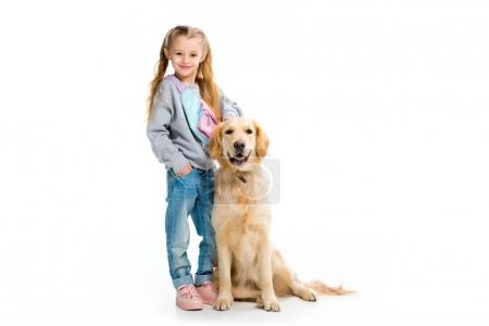 Little child standing with golden retriever isolated on white