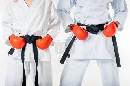 cropped image of karate fighters with black belts and red gloves isolated on white