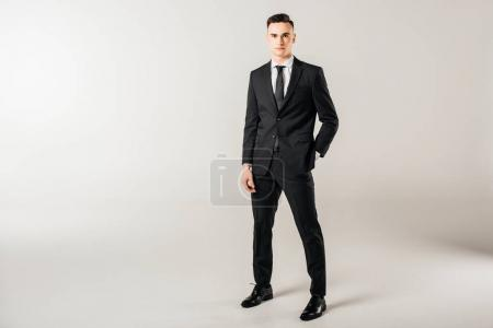 Photo for Handsome businessman standing and looking at camera on grey - Royalty Free Image