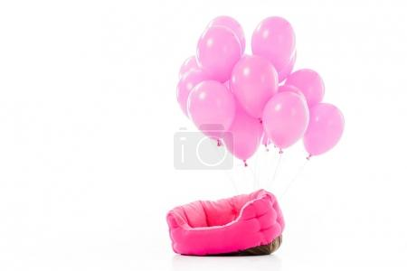 Pink pet bed with balloons isolated on white