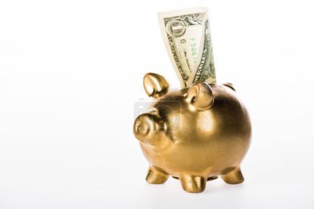vue rapprochée de la tirelire dorée et du billet en dollar isolés sur blanc