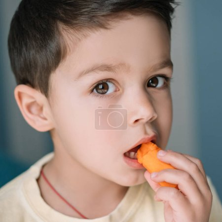 Photo for Portrait of adorable boy eating fresh carrot and looking at camera - Royalty Free Image