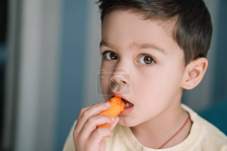 Photo for Cute child eating fresh carrot and looking at camera - Royalty Free Image