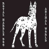 White dog with black spots inscription Royal Marble dog and  Animal World on a black background vector