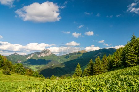 Mountain landscape in spring-time, the national park Mala Fatra.