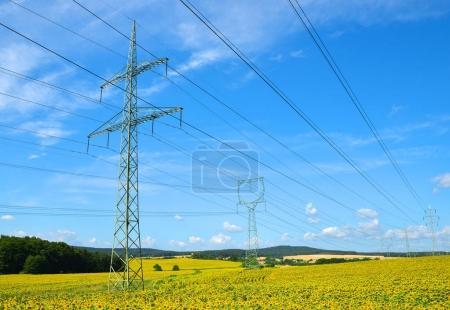 Photo pour Pylônes d'électricité haute tension dans le champ de tournesols. - image libre de droit