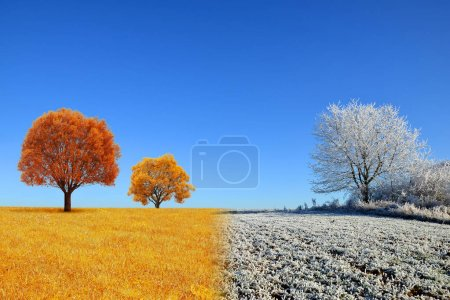 Autumn and winter landscape with blue sky.