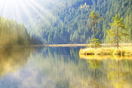 Photo for Moraine lake Kleiner Arbersee in National park Bavarian forest. Autumn landscape in Germany. - Royalty Free Image