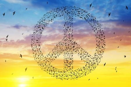Photo pour Silhouette des oiseaux qui volent en formation de symbole de paix à ciel coucher de soleil. - image libre de droit