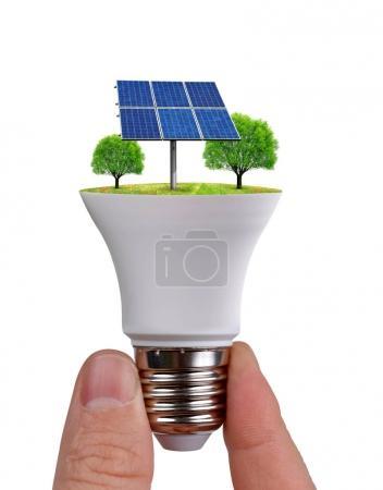 Foto de Bombilla de mano eco led con panel solar aislado sobre fondo blanco. Concepto de energía verde . - Imagen libre de derechos