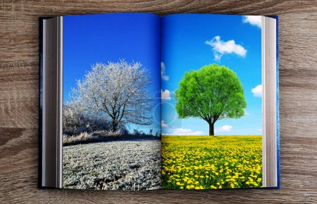 Picture of winter and spring landscape in the book. Concept of change season.