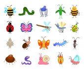 Funny bugs Vector cute insects isolated on white background