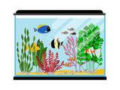 Cartoon fishes in aquarium Saltwater or freshwater fish tank vector illustration