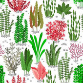 Seaweed seamless pattern Sea weed fur vector background for marine fashion