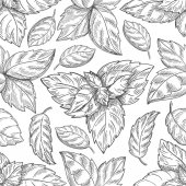 Mint leaf pattern Peppermint leaves sketch vector background for tea wrapping paper