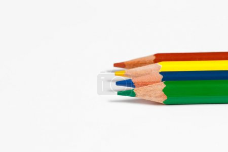 Multicolored pencils for drawing on a white background