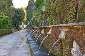fountains in italian renaissance garden - villa d'Este in Tivoli, Italy