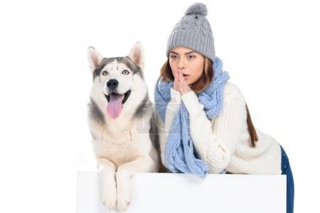 Photo pour Chien husky et femme en bonnet tricoté et écharpe assise sur cube blanc, isolée sur blanc - image libre de droit