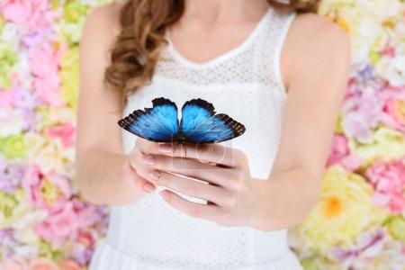 Photo pour Plan recadré de femme tenant beau papillon bleu - image libre de droit
