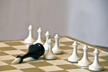 White pawns won black king. The leader lay on a wooden chessboard