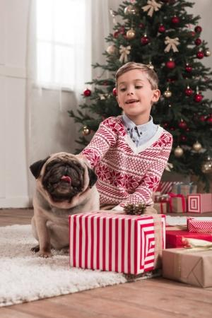 boy with cute pug on christmas