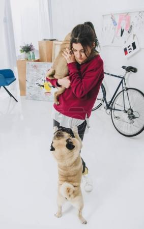 Young woman playing with pugs in stylish room