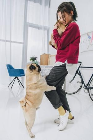 Attractive young girl playing with pugs in stylish room