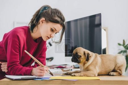 Cute pug looking at girl working on illustrations on working table with computer