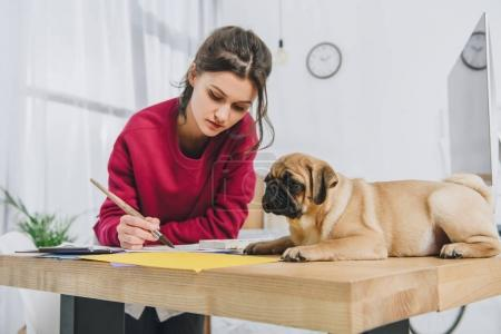 Pretty lady working on illustrations with cute pug on working table with computer