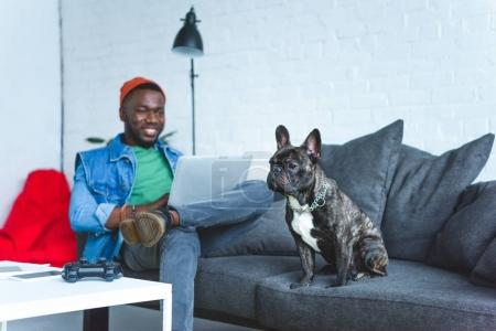 Photo for Handsome african american man working on laptop while sitting on sofa with bulldog - Royalty Free Image