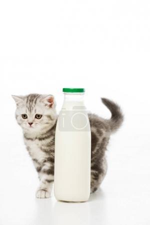 Photo pour Adorable petit chaton près de bouteille de lait isolé sur blanc - image libre de droit