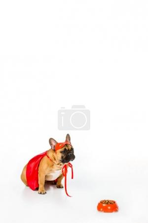 adorable french bulldog in superhero costume sitting near bowl full of dog food isolated on white