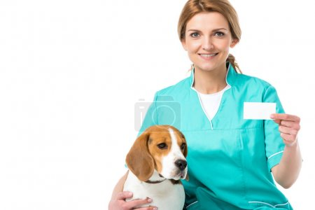 portrait of smiling veterinarian with beagle dog near by showing blank card in hand isolated on white
