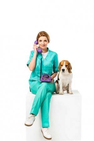 smiling veterinarian with beagle dog near by talking on telephone isolated on white