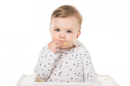 baby boy eating cookies sitting in highchair isolated on white background