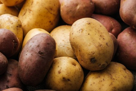 organic raw potatoes on white background