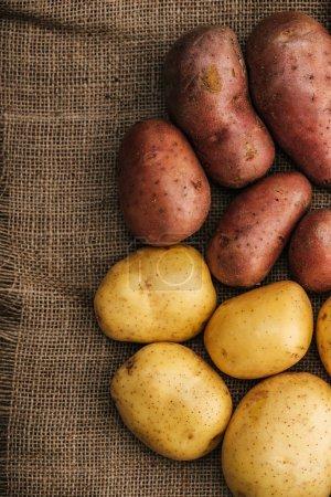 Photo pour Top vue des pommes de terre crues biologiques sur un sac rustique brun - image libre de droit