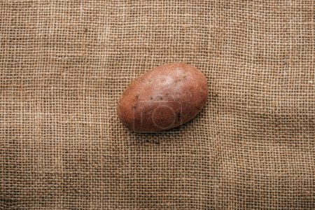 Photo for Top view of organic raw potato on brown rustic sackcloth - Royalty Free Image