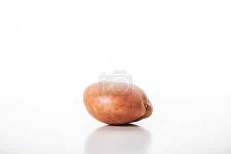 Photo for Organic raw potato on white background - Royalty Free Image